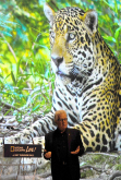 National Geographic LIVE! – On the Trail of Big Cats